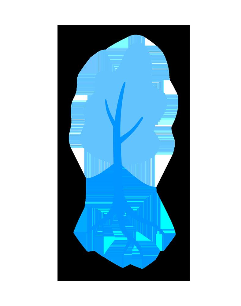 H&S tree